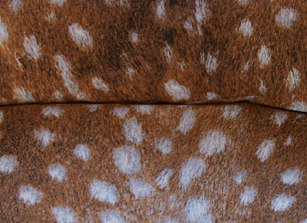 Beddinghouse dekbedovertrek Cervinae brown