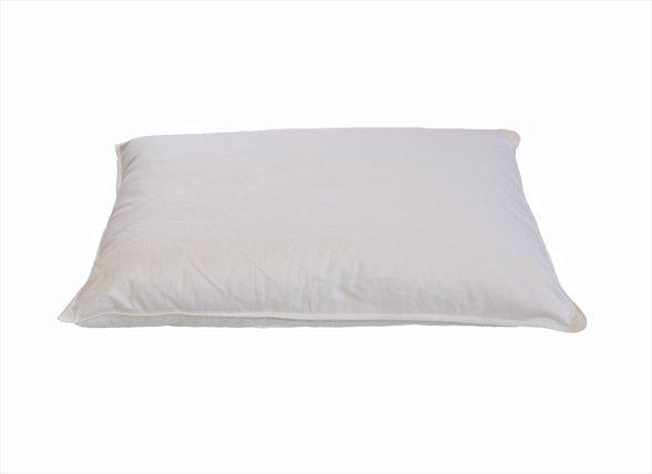 Sleep & Dream kussentje ganzenveren 40x60